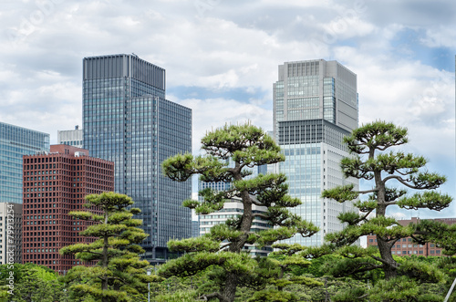 Skyscrapers and japanese garden in Tokyo Japan Poster