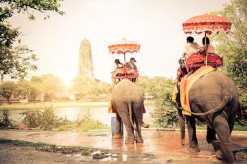 Słonie w Ayutthaya