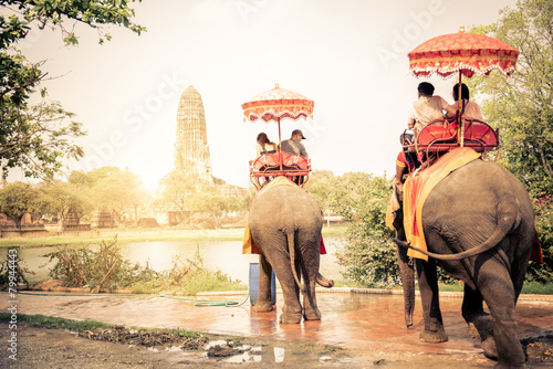 Elephants in Ayutthaya