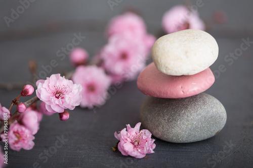 Recess Fitting Zen fleurs zen