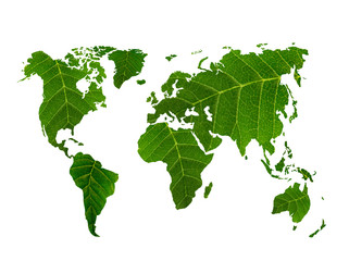Fototapetaeco world map made of green leaves