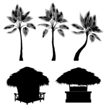Tropical Bungalow And Palm