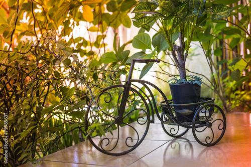 Foto op Canvas Vogels in kooien Decoration in green garden