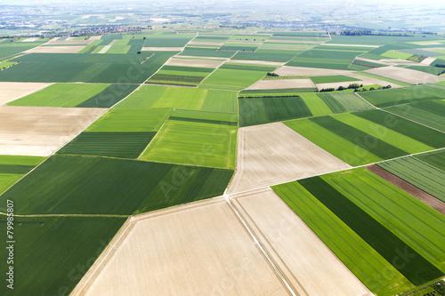 Deutschland, Rheinland-Pfalz, Ingelheim, Blick auf Felder, Landschaft, Luftbild