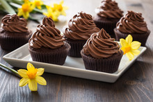 Mothers Day  Chocolate Cupcakes  With Spring Flowers