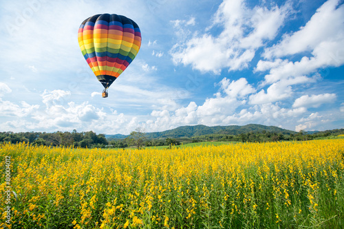 Poster Montgolfière / Dirigeable Hot air balloon over yellow flower fields against blue sky