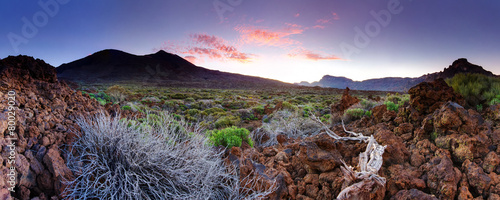 Tenerife Teide National Park Wallpaper Mural
