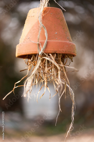Fotografie, Obraz  Insektenhotel