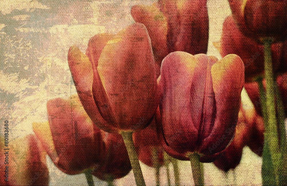Fototapety, obrazy: Stare płótno z tulipanami