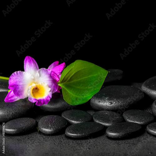 Fototapeta spa background of purple orchid dendrobium and green leaf Calla obraz na płótnie