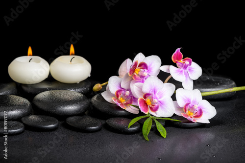 Poster Spa beautiful spa still life of purple orchid phalaenopsis and green