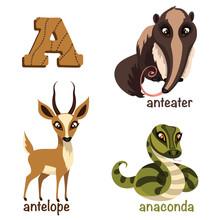 Alphabet Animals. Anteater, An...