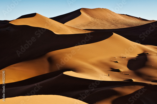 Poster de jardin Desert de sable Sand Dunes