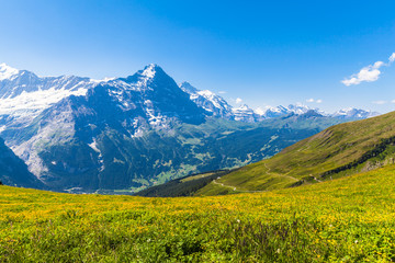 Panel Szklany Góry Panorama view of Eiger and otehr peaks