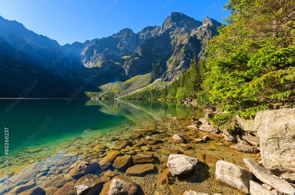 Fototapety, obrazy: Green water mountain lake Morskie Oko, Tatra Mountains, Poland