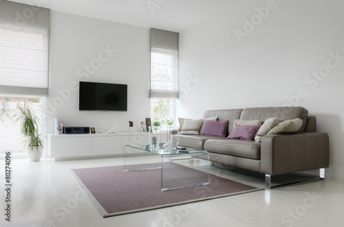 Fotografie, Tablou  White living room with taupe leather sofa