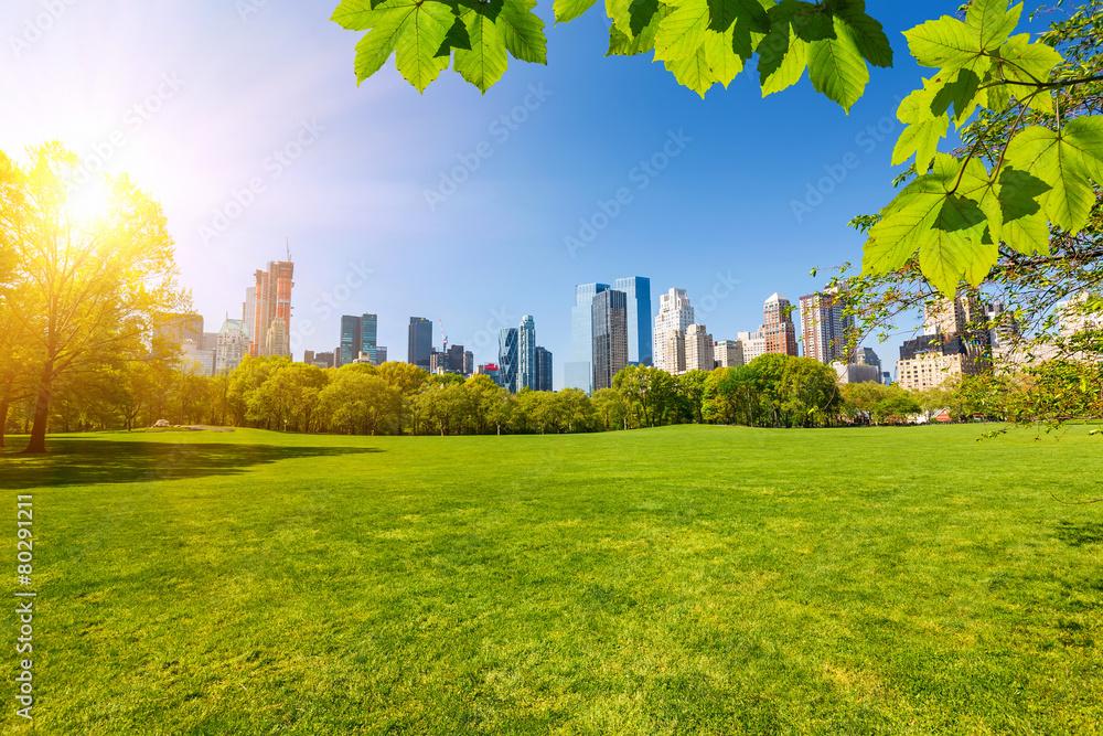 Fototapety, obrazy: Central park, New York