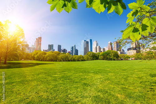Central park, New York Fototapete