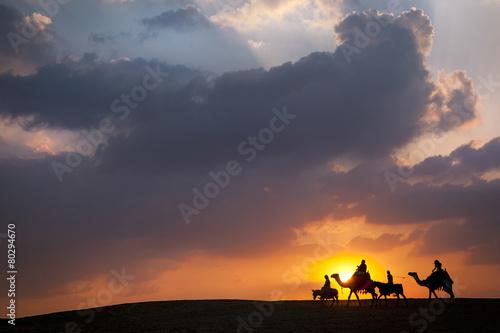 Fotografering  Donkey, camel, Donkey, Camel