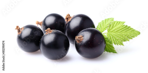 Photo Blackcurrant with leaf