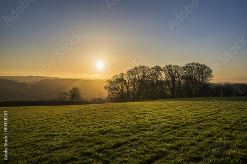 Wall Murals Beautiful morning Sunrise in cornish fields with silhouetted trees