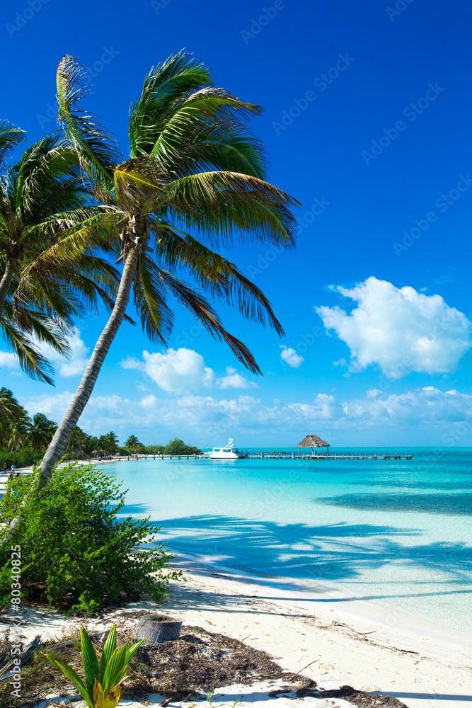 Fototapeta beach
