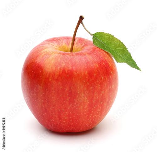 Fotografía Gala Apple