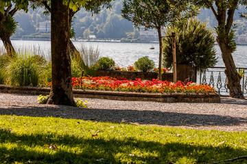 Fototapeta na wymiar Bellagio, Lago di Como, Como, Lombardia, Italia
