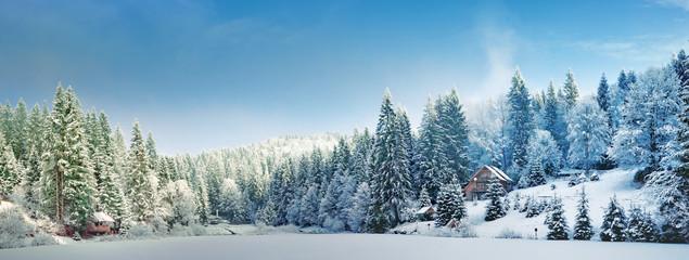 Панорама зимним утром в Карпатах