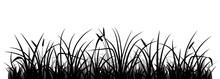 Meadow Grass Silhouette, Vecto...