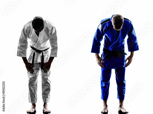 Photo Stands Martial arts judokas fighters fighting men silhouette
