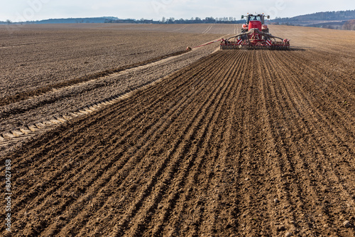 Fotografie, Obraz Spring field works