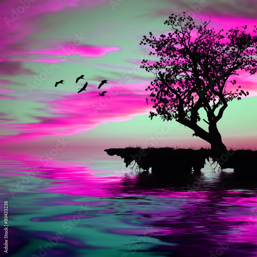 Poster Rose Beautiful landscape with birds