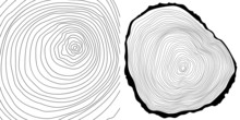 Vector Tree Rings Background A...