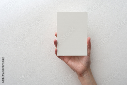 Fotomural hand holding blank card on white background