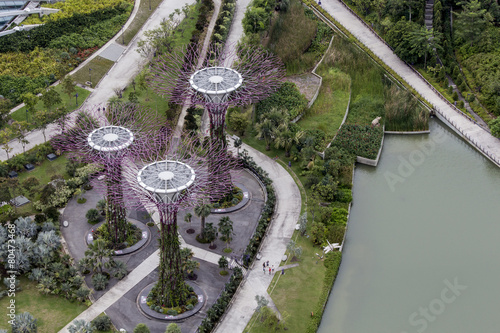 Photo  Supertree Grove at Gardens by the Bay in Singapore