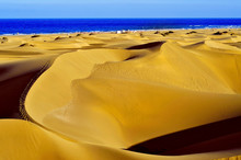 Natural Reserve Of Dunes Of Ma...