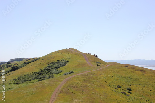 Lush green hills with path