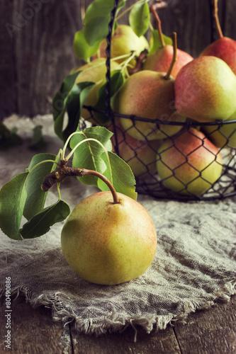 fresh organic pears Canvas Print