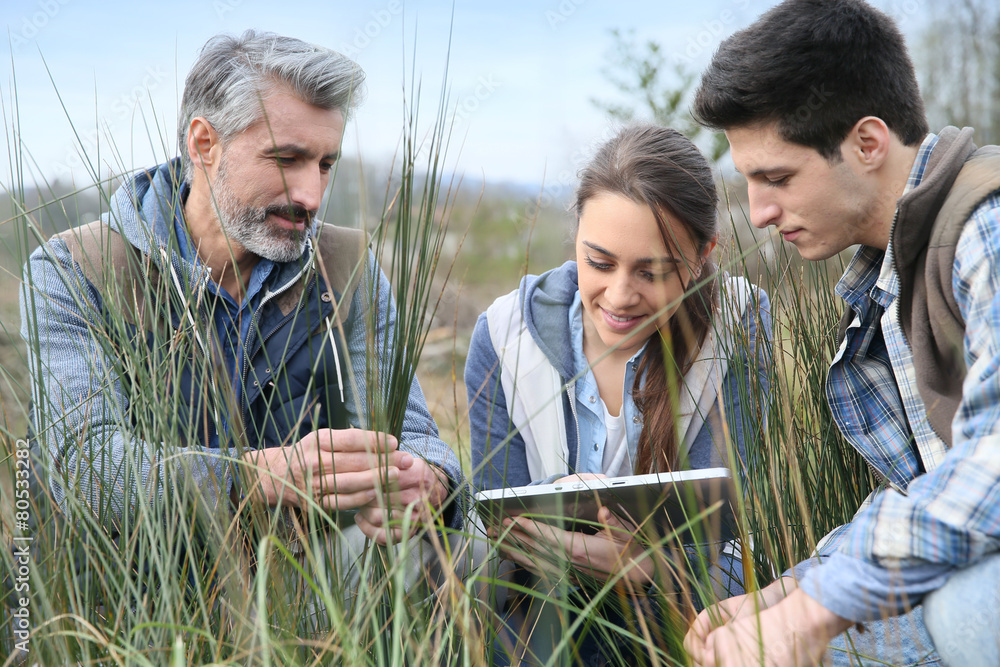 Fototapety, obrazy: Teacher with students in agronomy looking at vegetation