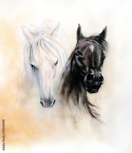 glowy-koni-dwa-czarno-biale-duchy-koni-piekny-szczegol