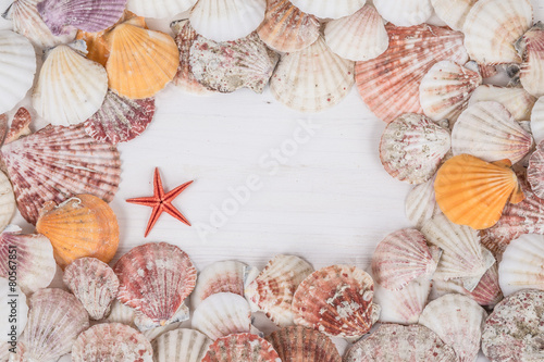frame with seashells on wooden surface