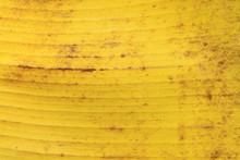 Dried Banana Leaf Textured Or ...