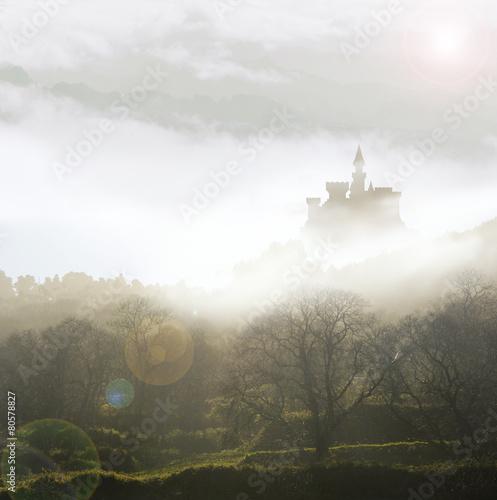 Fotografie, Obraz  fairytale castle in mist