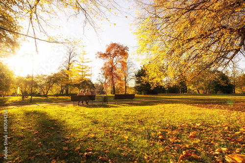 Foto op Plexiglas Landschappen Abendsonne im Park - Wernigerode