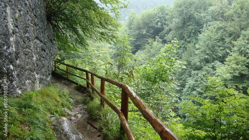 Fototapeta na szlaku w deszczu obraz