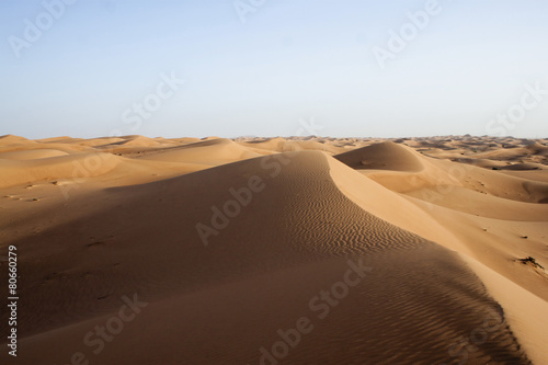 Foto op Plexiglas Zandwoestijn Dubai desert with beautiful sandunes