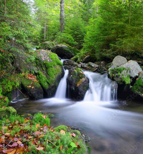 Keuken foto achterwand Watervallen Mountain creek in the national park Sumava-Czech Republic