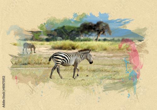 zebra-na-teksturowanym-papierze-efekt-pedzla