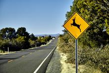 Deer Crossing Road Sign On Side Of Asphalt Road With Pine Trees